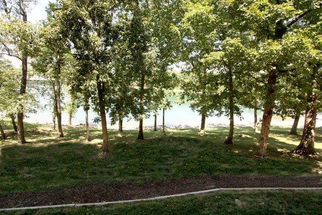 Trees and lake at Vickery Resort